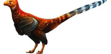 علماء من إنجلترا يتوصلوا إلى وجود ديناصور على شكل دجاجة من 110 ملايين سنة