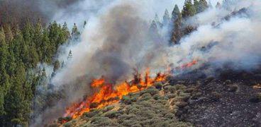 حريق جزر الكناري