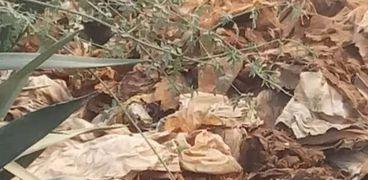أكفان الموتي في مقابر شبين الكوم