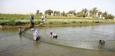 مطالبات بتطوير الأسواق الخاصة بقطاع الاستزراع السمكى