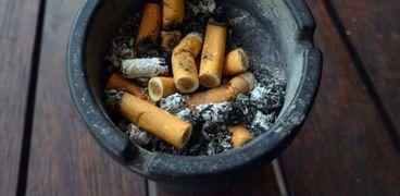 تمثل أعقاب السجائر المطفأة ضررا لا يقل خطورة عن نظيرتها المشتعلة
