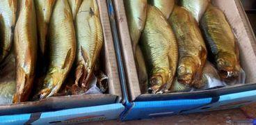 الرقابة والتفتيش على الأسماك