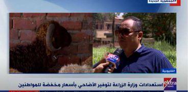 المهندس سعيد الدسوقي، مدير عام قطاع الإنتاج الحيواني بوزارة الزراعة