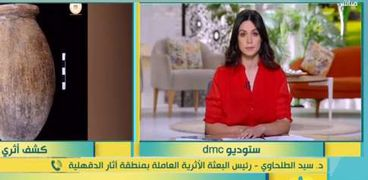 سيد الطلحاوي، رئيس البعثة الآثرية للعاملين في آثار الدقهلية