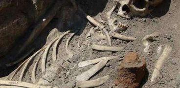 في عام 1917، عثرت الشرطة المصرية على ثلاث عظام