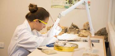 اختبار للحمض النووي - أرشيفية
