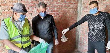 جانب من حملة جمع الخفافيش النافقة