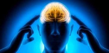 6 أطعمة تساعد على زيادة التركيز وتقوية الذاكرة