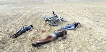 إرهابيون تمت تصفيتهم على يد قوات الجيش بسيناء