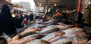 «شعبة الأسماك» تحذر من 8 أصناف سامة تباع في السويس والأسكندرية ودمياط