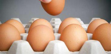 سعر كرتونة البيض في الاسواق اليوم