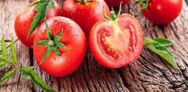 مشروع تجفيف الطماطم