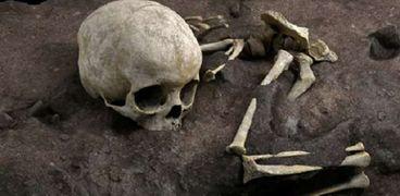 اكتشاف أقدم رفات بشرية لطفل في إفريقيا