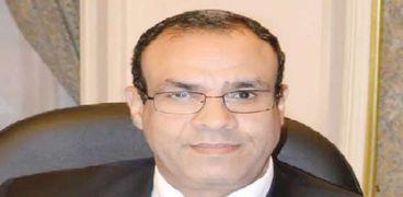 السفير بدر عبدالعاطي