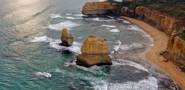 رحالة يعثر على «شجرة الحياة» في بحيرة أسترالية