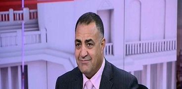 النائب إلهامي عجينة، عضو مجلس النواب