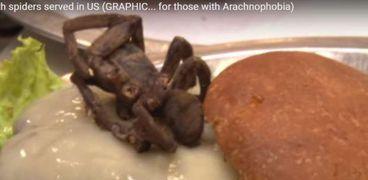 مطعم أمريكي يقدم لزبائنه وجبة برجر بالعنكبوت