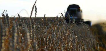 زيادة مرتقبة لرسوم تصدير القمح في روسيا