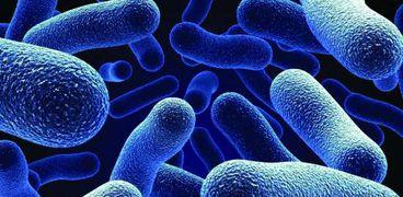 دراسة حديثة: البكتيريا تسبب السرطان وأمراض القلب