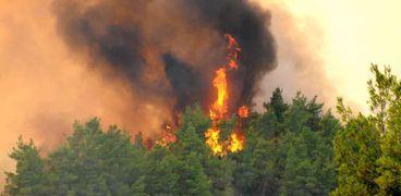 حرائق الغابات في تركيا تتواصل
