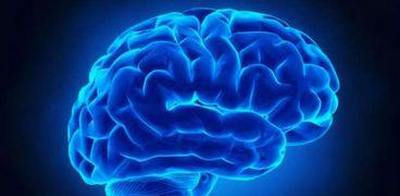 باحثون يكتشفون مركز الإحساس بالألم في الدماغ