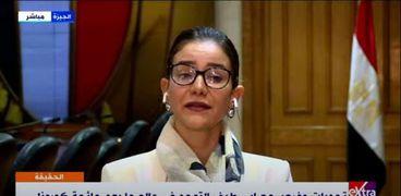 معاون وزيرة التضامن