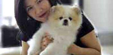 أول كلب يتوفي بكورونا في العالم