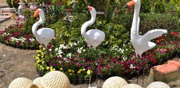 معرض زهور الربيع
