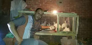 محمد صنع عشة للكتاكيت داخل منزله