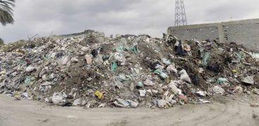 القمامة تملأ الشوارع
