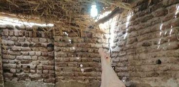 ضبط 7 خراف مذبوحة خارج المجازر داخل مخزن مطعم شهير بقنا