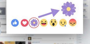 الزهرة البنفسجية على فيس بوك