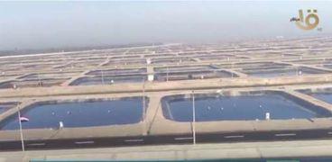 مشاريع الاستزراع السمكي
