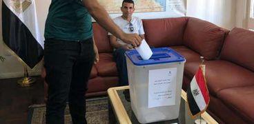 المصريون في الخارج يشاركون في التصويت على الدستور