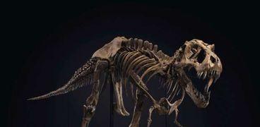 هيكل الديناصور الذي حقق أكثر من 499 مليون جنيه
