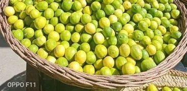 ارتفاع اسعار الليمون الى 100 جنيه