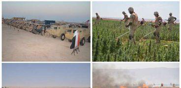 عاجل.. القوات المسلحة تنفذ دورية للقضاء على الزراعات المخدرة بجنوب سيناء
