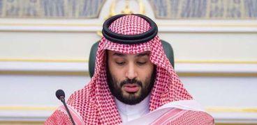 ولي العهد السعودي محمد بن سلمان يطلق مبادرة السعودية الخضراء