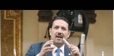 برلماني بالغربية: الفلاح المصري «يحتضر» وتفعيل دور رقابه الأسمدة