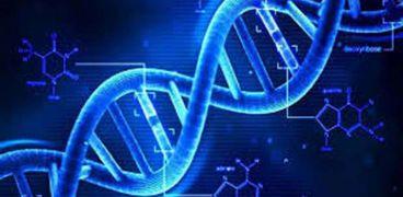 فرنسا.. الحمض النووي يحل لغزا عمره 200 عام