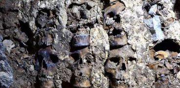 العثور على 119 جمجمة في المكسيك