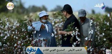الدكتور عادل عبدالعظيم