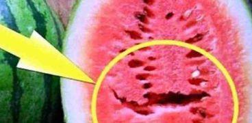 كيفية معرفة البطيخ المسرطن