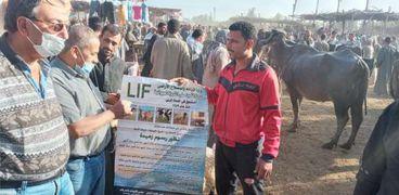 صندوق التأمين على الثروة الحيوانية يطلق قافله بيطرية بسوق الماشية في المنوفيه