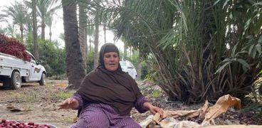 سيدات يقطفن محصولي الجوافة والبلح