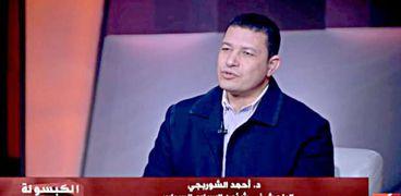 الدكتور أحمد الشوربجي