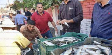 أسعار السمك لا زالت في المتناول بالسوق.. «القائمة كاملة»