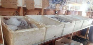 سوق أسماك - أرشيفية