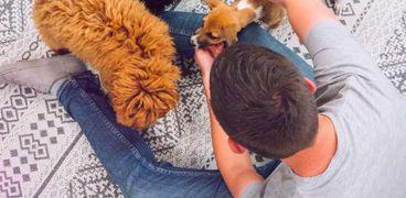 وظيفة الأحلام: مطلوب موظف يلعب مع الكلاب بمقابل مادي مغري