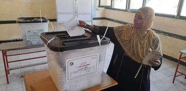 الناخبون خلال التصويت في أسوان